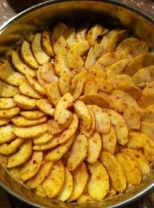appeltaart-suikervrij-glutenvrij-rawfood