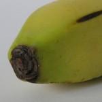 Banaan-bananenijs-suikervrij