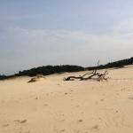 Zandverstuiving-Veluwe