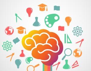 Hersenen - essentiele olie