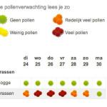 Pollenverwachting
