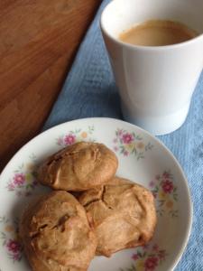 koekjes-gebakken-met-zoetstof-stevia