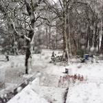 Column Anne-Mieke - Winterse herinneringen - moment van bezinning, ervaren, voelen