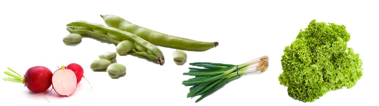 tuinbonen-gezond-recept-salade