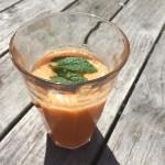 Heerlijk zomerse shake en mijn ervaring met een slowjuicer