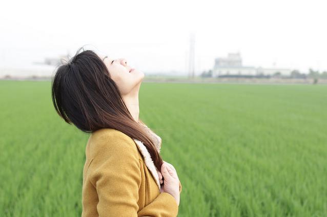 Heerlijk stress vrij leven en dromen - midden in een weiland