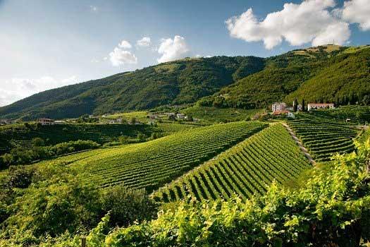 Prachtige culinaire reis in Italië