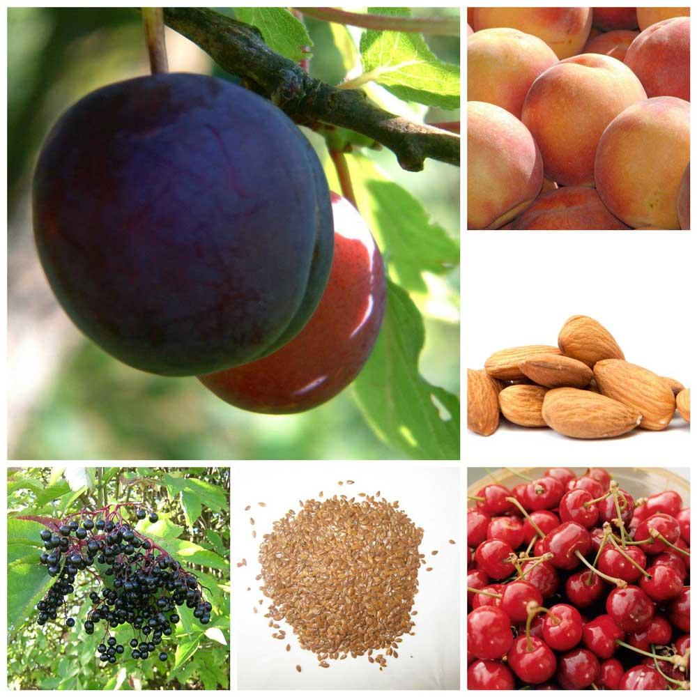 Vergiftigd door gezond eten? Hoe gezond zijn fruit en zaden eigenlijk?