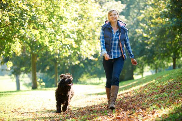 Waarom wandelen gezond is!