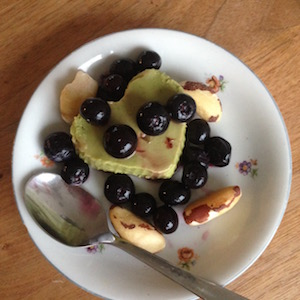 Gezond ontbijtrecept, avocado-pudding