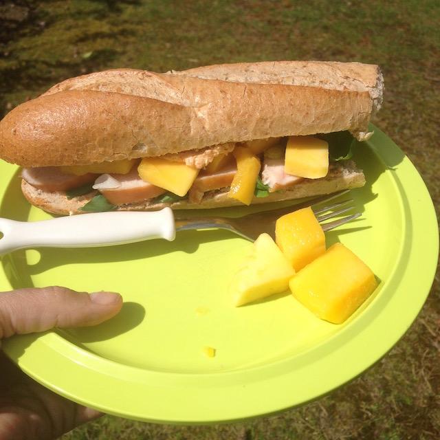 Broodje kip en mango, een lekker fris en gezond recept