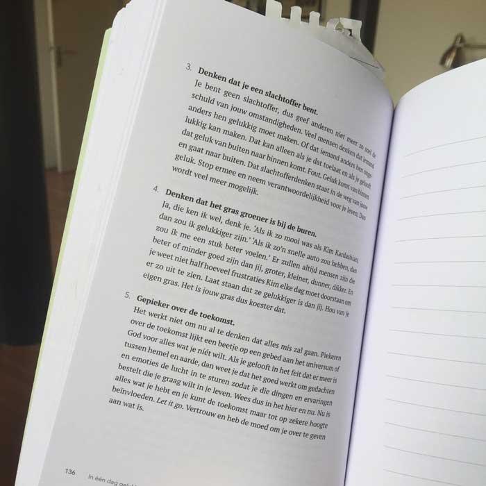 In 1 dag gelukkig! Boek over gedachtes, denkpatronen en lichtpuntjes!