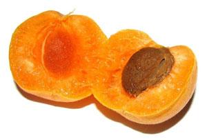 abrikozen-gezond