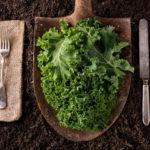 Is boerenkool gezond? Met 10 tips voor aparte boerenkoolrecepten