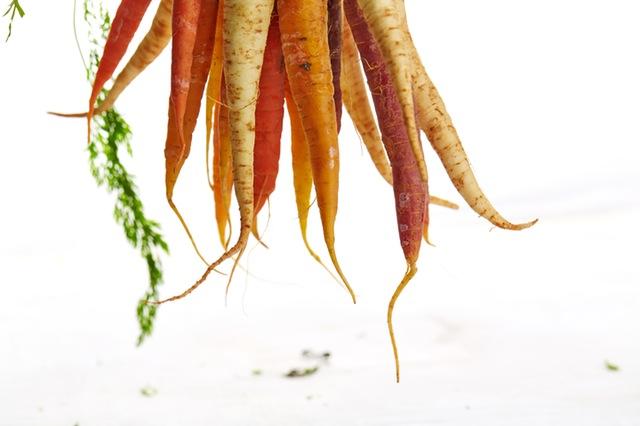Hoe gezond zijn wortels?