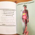 Anatomie voor kinderen, hoe werkt je lichaam?