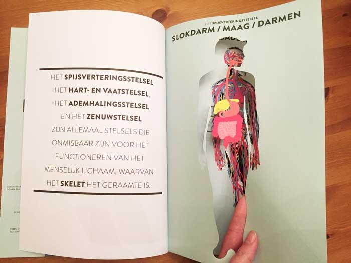 Boek Anatomie voor kinderen