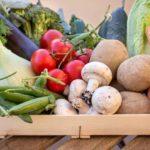 Waarom moeten we echt voedsel eten?