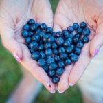 Waarom zijn blauwe bessen gezond?