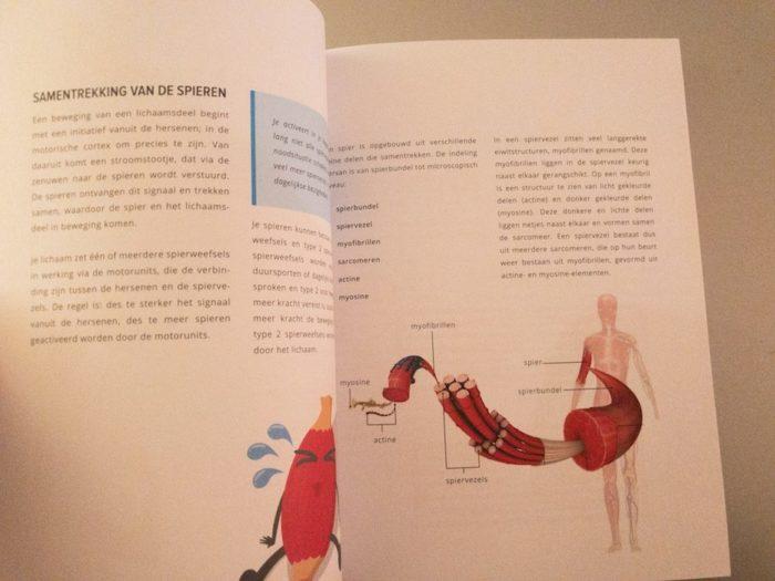 Maak je eigen trainings- en voedingsschema met het boek van fit.nl