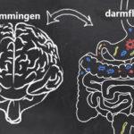 Is er een verband tussen voeding en psychische gezondheid