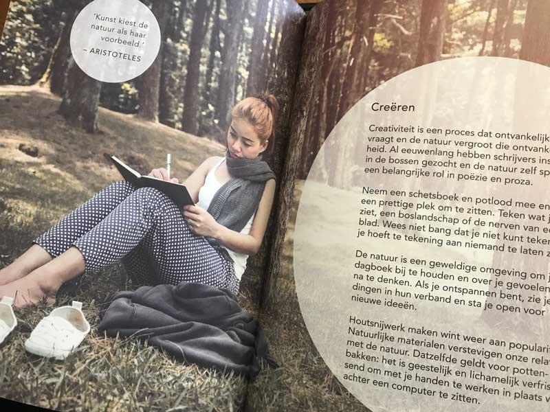 Hoe de natuur en het bos goed is voor creaitviteit en onze gezondheid!
