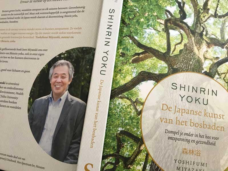 Wandelen door het bos, Shinrin Yoku!