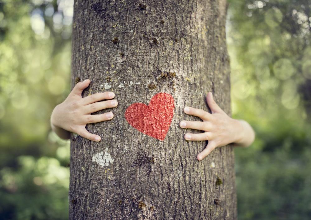 Hoe kan ik duurzamer leven? Tips omtrent voeding, gezondheid en liefde voor de ander!