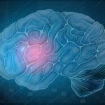 5 dingen die je nog niet wist over hersenen