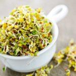De beste groenten tegen vermoeidheid