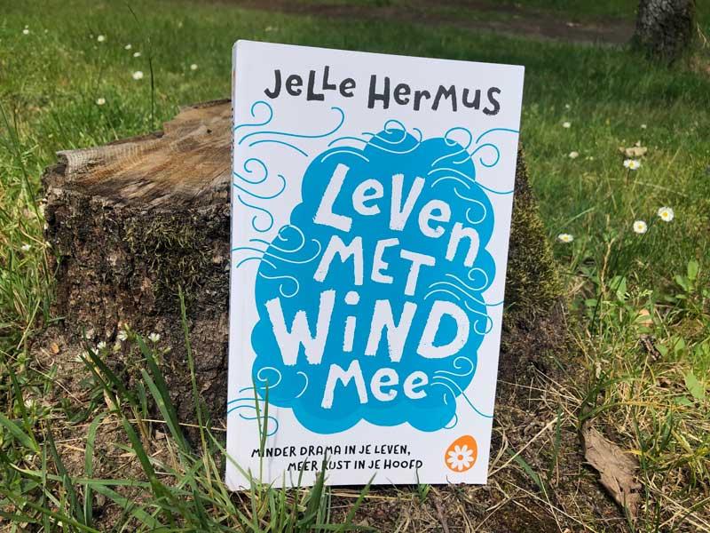 NIeuwste boek soChicken Jelle Hermus, Leven met wind mee