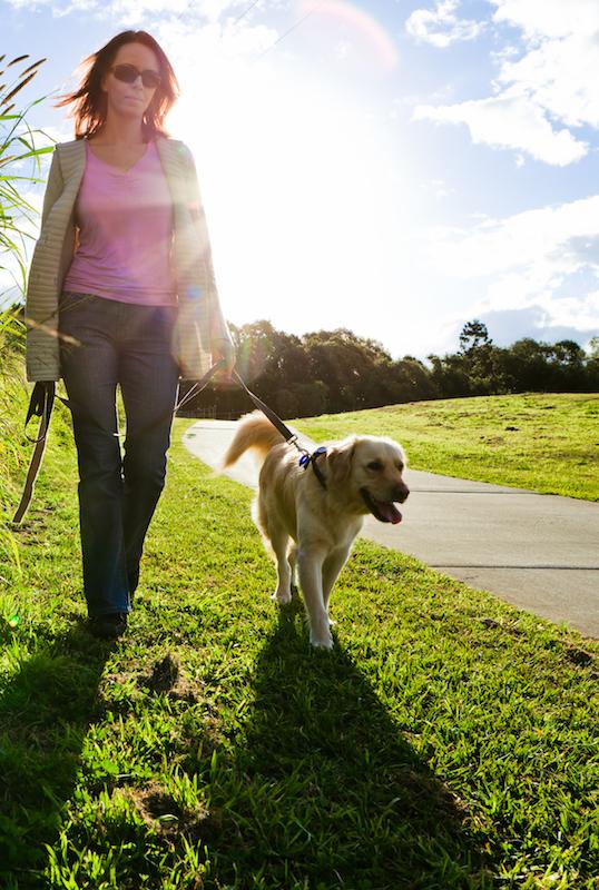 tips voor je gezondheid door te wandelen met je hond
