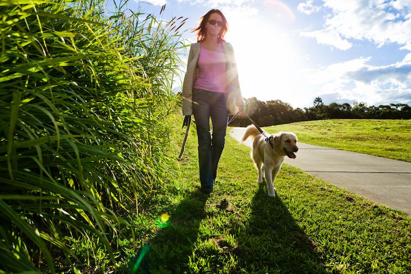 Tips om te wandelen met je hond voor je gezondheid