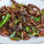 Insecten eten gezond?