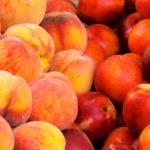 Verschil tussen nectarines en perziken