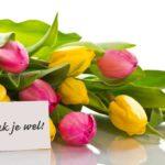 Dankbaarheid en gezondheid, inclusief dankbaarheidsoefeningen