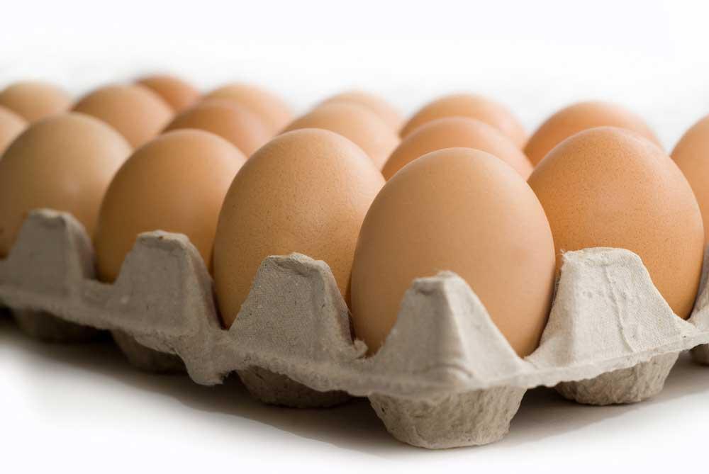 Feiten over eieren
