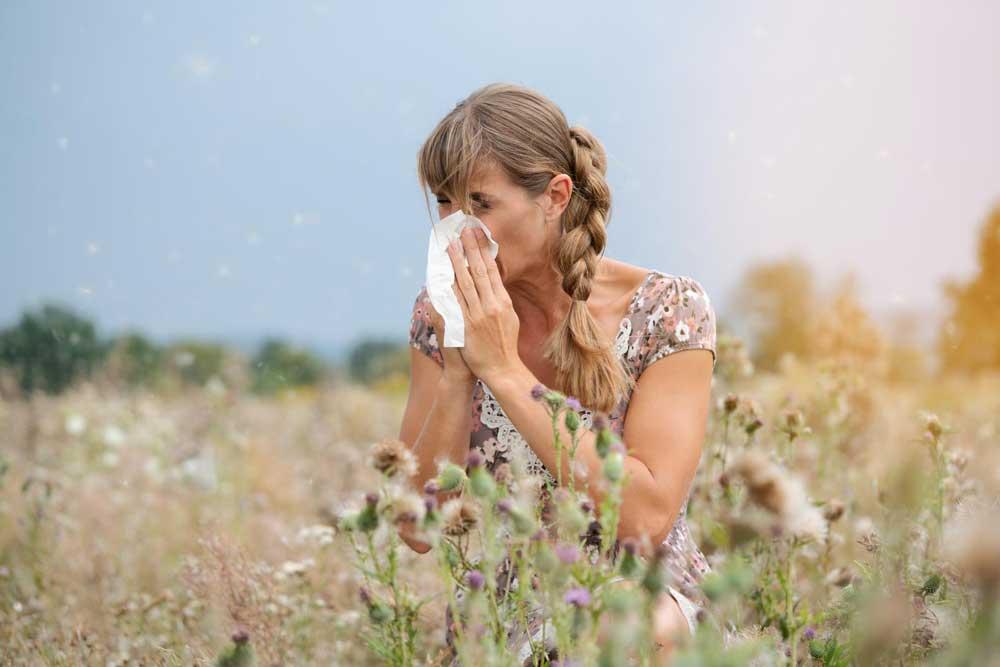 Natuurlijk medicijn tegen hooikoorts